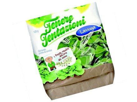 SEI laser - Flexible packaging - salade
